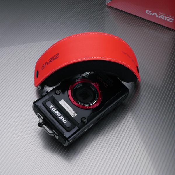 FS208